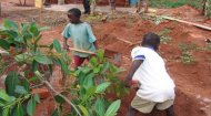 Volunteering Projects in Uganda: Habitat