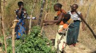 Volunteer Work Zambia: Development in Gardening